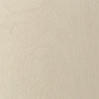 Texture: Birch