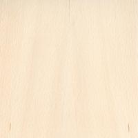 Texture: sauna door wood